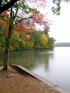Walden Pond. Part of Emerson's property and where Henry David Thoreau wrote Walden.