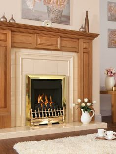 Nevada Plus, Gas Fire, Brass, Coal Fuel Bed