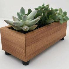 black succulent planter - Google Search