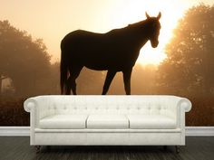 Living Room Ideas with Horse Mural