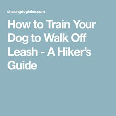 How to Train Your Dog to Walk Off Leash - A Hiker's Guide