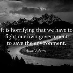 Ansel Adams: It is horrifying that we have to fight our own government to save the environment. (Doesn't the government live on this planet too? Save Our Earth, Save The Planet, Our Planet, Planet Earth, We Are The World, In This World, Ansel Adams Quotes, Hubert Reeves, Pokerface