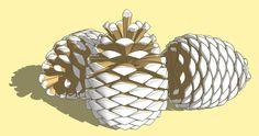 PineCone.jpg (1000×527)