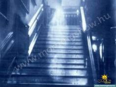 Raynham Hall in England is a splendid home in Norfolk. Inhabited by Townshend family for over 300 years, the hall gives its name to the area, known as the Raynhams. It also gave us one of the most famous and well-regarded ghost photographs ever taken. Monster High, Ghost Touch, Ghost Caught On Camera, Catty Noir, Short Vacation, Cartoon Monsters, Real Ghosts, Creepy Pictures, Catacombs