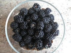 Freshly picked blackberries - Spring Garden Abundance.