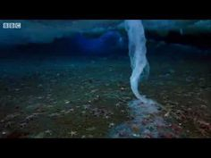 """""""Brinicle"""", Ice finger of death is an ice cold underwater tornado."""
