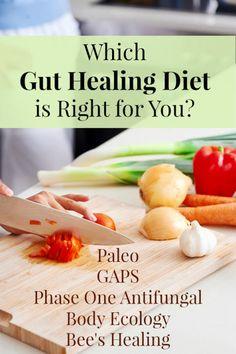 Gut healing diet for ITT