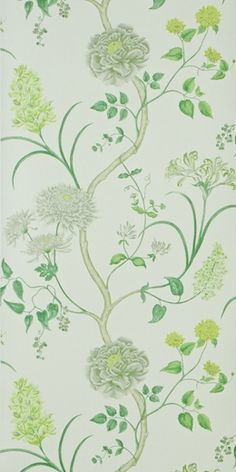 Summer Tree Wallpaper availabable from www.sanderson-uk.com available in 4 different colourways