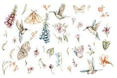 Fairy Clipart, Forest Fairy, Digital Illustration, Fairies, Fairy Tales, Clip Art, Watercolor, Pattern, Etsy