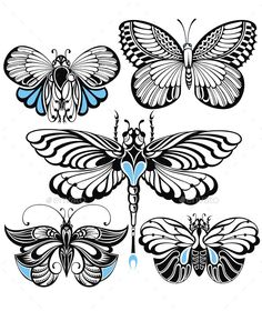 Butterfly Set by ksyxa Insect Collection Stencils, Stencil Art, Illustrations, Illustration Art, Butterfly Quilt Pattern, Mandala Art Lesson, Wings Drawing, Simple Butterfly, Butterfly Drawing
