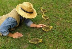 írókboltja ősz természet nature Centauri író writer author Magvető Kiadó irodalom regény könyv fotó madarak természet Dog Food Recipes, Corgi, Pets, Animals, Corgis, Animales, Animaux, Animal Memes, Animal