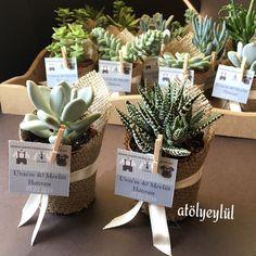 Mini sukulent, mini succulent, kaktüs, cactus, wedding favors, nikah şekeri, nikah hediyesi, babyshower gifts, christmas, new Yesar, Handmade gifts ~ by Atolyeylul