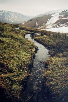 pinterest.com/fra411 #explore #outdoor - stream