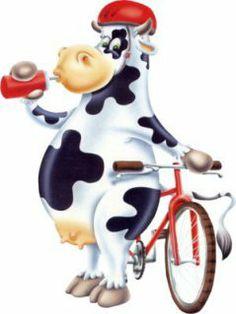 cows -- TERNURITAS NETWORK