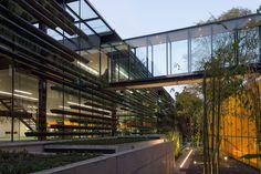 Galeria de Sede Falcon II / Rojkind Arquitectos + Gabriela Etchegaray - 11