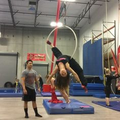 """414 Me gusta, 25 comentarios - Danielle Ricciardi (@strappiness) en Instagram: """"Learned a new trick on #aerialhoop tonight thanks to @kanoagalios Now I feel inspired to workshop…"""""""