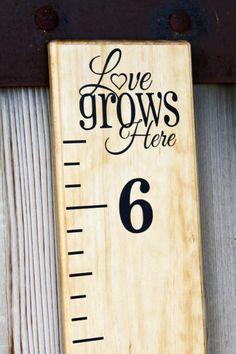 Growth Chart Ruler Add-OnLove Grows Here Vinyl by LittleAcornsByRo