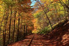 The Rail goes ever on... by Celem.deviantart.com on @deviantART
