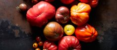 Vegan Recipes | The Purple Carrot