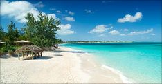 Turks and Caicos All Inclusive Family Resort - Beaches Turks & Caicos Resort Villages & Spa-next year