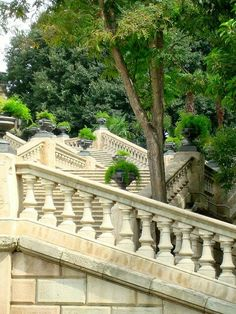 #stairs #architecture #staircase #steps #design #stairway #art #vscocam #vsco #building #nature #city #travel #green #urban #love #garden #forest #landscape #nofilter #picoftheday #photooftheday #natural #park #trees #naturelovers #view #instanature #naturaleza #naturelover