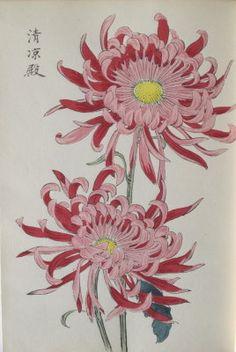 Japanese Keika Woodblock Printed Book Chrysanthemum