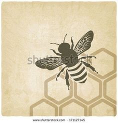 bee old background - vector illustration - stock vector