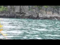 Underground River Palawan   Tinee Dideles Palawan, Places To Visit, Waves, World, Youtube, Outdoor, Outdoors, Ocean Waves, The World
