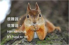 https://www.facebook.com/ZhongWenGuShi/photos/pb.359604593233.-2207520000.1430847763./10152601584763234/?type=3