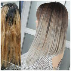 gray hair long angled bob hair cut color correcction