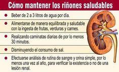 CUIDADO DEL RIÑON