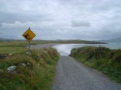Irish road sign :)