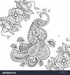 Image result for peacock animal adult colouring