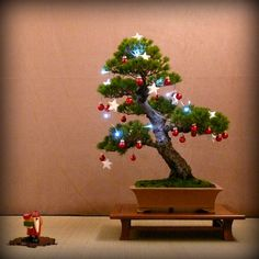 Merry Christmas to all our Pinterest friends! #bonsai #christmas