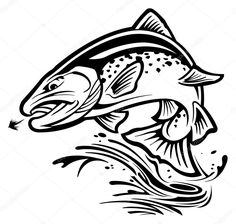 Download - Trout — Stock Illustration #43146183