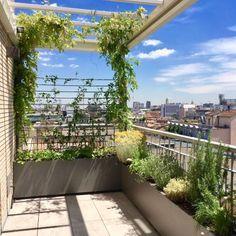 Fioriere Da Esterno Su Misura 05 Rooftop Terrace Design, Terrace Garden Design, Rooftop Garden, Balcony Garden, Roof Garden Plants, Diy Garden Fence, Balcony Plants, Small Backyard Landscaping, Modern Landscaping