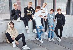 BTS- Puma Bog Sock