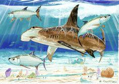 Hammerhead Shark with Tarpon Fish Wall Art, Fish Art, Shark Painting, Painting & Drawing, Ocean Drawing, Sea Life Art, Ocean Life, Shark Art, Underwater Art