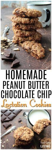 Homemade Peanut Butter Chocolate Chip Lactation Cookies These lactation cookies are the most delicious way to increase milk supply while breastfeeding So good you wont. Homemade Peanut Butter, Chocolate Peanut Butter, Delicious Chocolate, Chocolate Chip Cookies, Baby Food Recipes, Healthy Recipes, Yummy Recipes, Biscuits, Increase Milk Supply