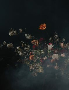 Inspired by Dutch Masters, these dark and moody florals channel 16th and 17th century Northern painters. The added smoke creates a cool photography effect.