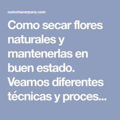 Como secar flores naturales y mantenerlas en buen estado. Veamos diferentes técnicas y procesos para secar flores y disfrutarlas más tiempo.