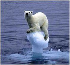 ¿¿ Cambio Climático ??