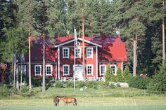 Myytävät asunnot, Onkijoenperäntie 177, Ypäjä #oikotieasunnot #puutalo