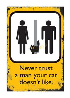 Carte de chat : jamais faire confiance A Man votre chat n