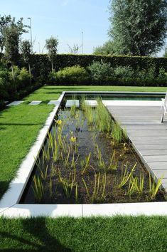 Backyard Landscaping, Modern Landscaping, Landscape Design, Garden Design, Natural Swimming Ponds, Backyard Water Feature, Backyard Paradise, Water Garden, Water Features