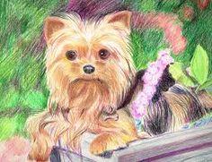 Image from http://orig13.deviantart.net/549d/f/2012/030/1/e/yorkie_by_arrogant_confident-d4o5gdt.jpg.