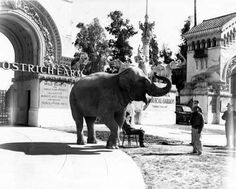 Entrance in approx. 1935 after Luna Park Zoo name had changed to California Zoological Gardens