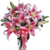 Pink lilies delivery san diego. Buy stargazer lilies san diego. Pink stargazer lily bouquet san diego. Stargazers delivery san diego.  http://www.deluxeflorist.com/products/luxurious-stargazer-lilies/