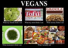 Ha! The most accurate of any humorous vegan commentary yet seen on the internet.