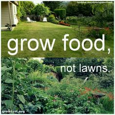 Grow food not lawns......  &/or Grow Wildlife Gardens, not lawns